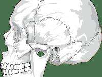 CMD: Was hilft bei Kieferschmerzen?